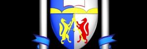 Лого НГАСУ (СибСтрин)